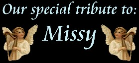 Tribute to Missy Header